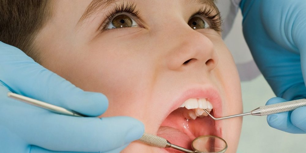 dentists south edmonton trained professionals within Edmonton